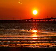 Low Tide by the Bridge by Jonicool