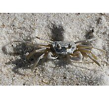 I'm crabby, so WHAT? Photographic Print