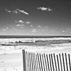 black and white beach by wendyL