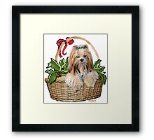 Lhasa in Christmas basket Framed Print
