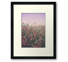 Floral Sunset Framed Print