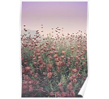 Floral Sunset Poster