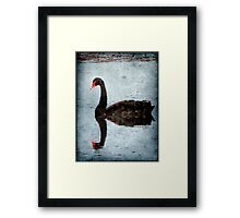 Morning on Dangars Lagoon III Framed Print