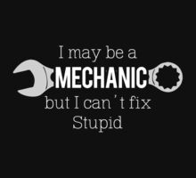I may be a Mechanic but I can't fix stupid  by Citizenfour