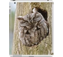 Sleeping Screech Owl iPad Case/Skin