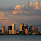 "Summer Skyline, Tampa Florida"" by David Lee Thompson"