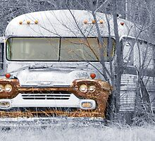 old bus with a twist by angelawillene