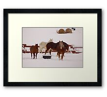 Winter Draft Framed Print