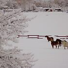 Winter Wonderland w/horses by UILFineArts