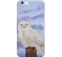Winter solstice iPhone Case/Skin