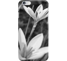 Not just one of the backup singers iPhone Case/Skin