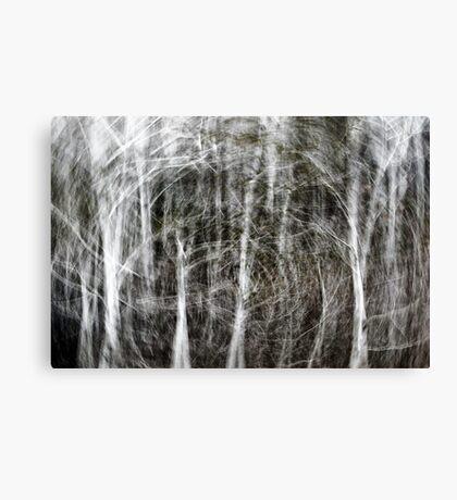 Forest Vortex... Canvas Print