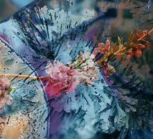 Colorado Color by bluerabbit