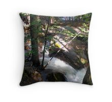 When the Valley floods Throw Pillow
