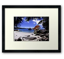 NA770-Ready 2 Pounce Framed Print