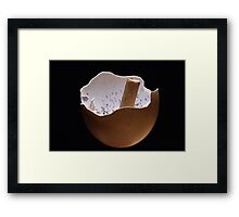 Eggshell Ashtray Framed Print