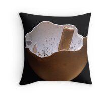 Eggshell Ashtray Throw Pillow
