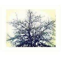 the dustbunny tree Art Print