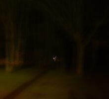 Fairy Lights by beast