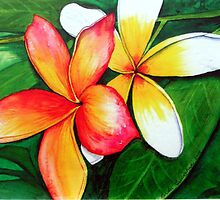 Frangipani Friends by © Linda Callaghan