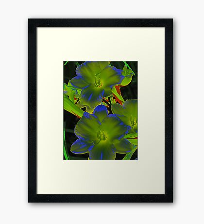 psychedelic lily Framed Print