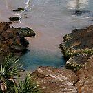 Paradise Found by Mark Claridge