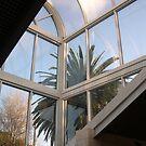 Nursery Glass roof by oiseau