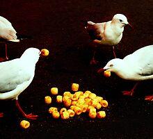 Untitled by Elizabeth Duncan