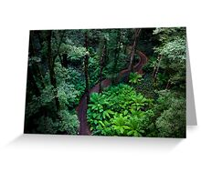 A forest bed Greeting Card