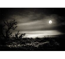 Louisiana night Photographic Print