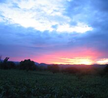 sunset-Malawi by clement