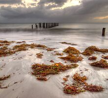 quindalup by Ian Robertson