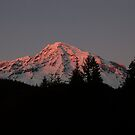 Mount Rainier at Dusk by Lynn Bawden