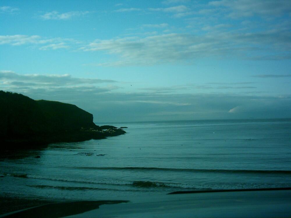 mull shore, aberdeenshire, scotland by peter  kidd