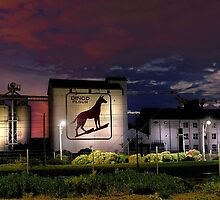 Dingo Flour - Fremantle Western Australia  by EOS20