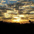 Wetlands Morning III by Rebecca Cruz