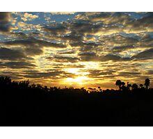 Wetlands Morning III Photographic Print