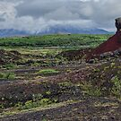 Colourful Icelandic Landscape by Gerda Grice