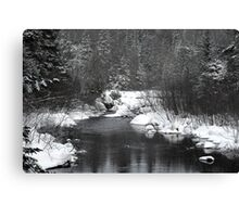 """Little Stream """"alive"""" in the Deep Freeze :) Canvas Print"""