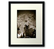 Petals and Light Framed Print