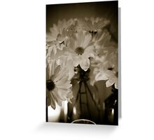 Petals and Light Greeting Card