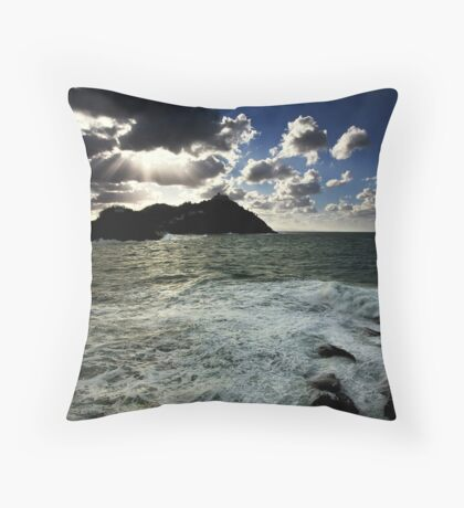 Ocean and Earth Throw Pillow