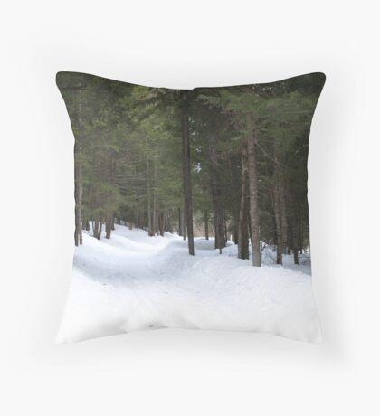 NC winter scene Throw Pillow