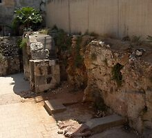 Ancient Stall units @ Cardo by Riihele