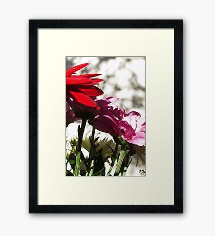 Mother's Reward Framed Print