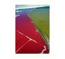 Red salt delta Art Print