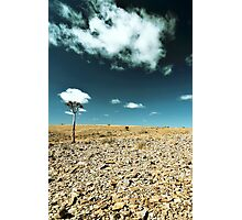 Up from the skies - Namibia Photographic Print