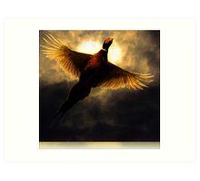 Flying through the sunlight Art Print