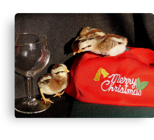 Serves You Right For Drinking All The Wine... -Duck Wing Chicks - NZ Canvas Print