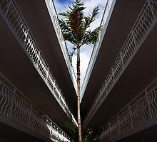 Key Largo Hotel by Brian Barnes StormChase.com